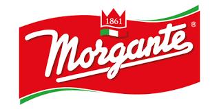 Morgante S.r.l